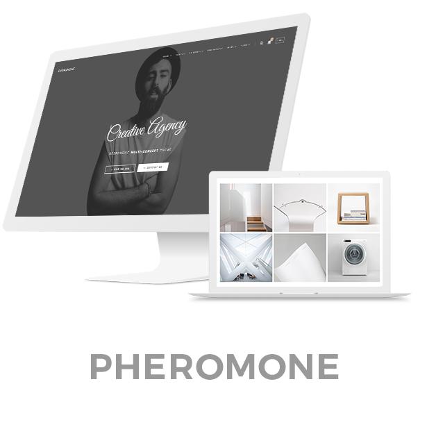 Pheromone - Creative Multi-Concept WordPress Theme - 1